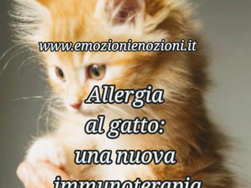 Allergia al gatto: una nuova immunoterapia