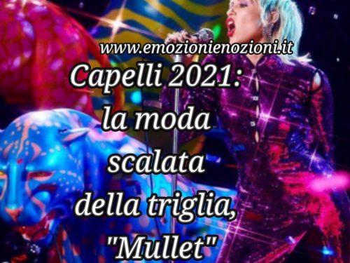 """Capelli 2021: la moda scalata della triglia, """"Mullet"""""""
